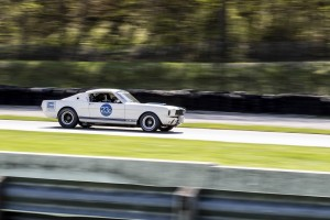 1966 Shelby GT350 on track